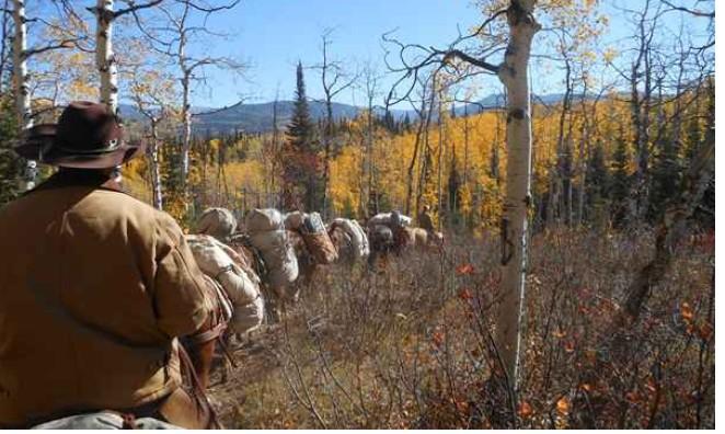 Colorado Elk Hunts Private Ranches , Self Guided - Colorado